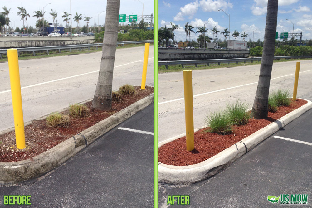 Commercial Curb Plants