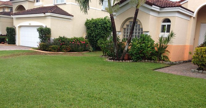 US Mow Lawn Care and Landscaping Maintenance Services